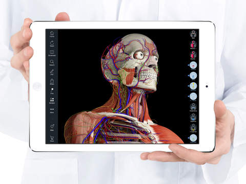 Essential Anatomy 5 screenshot 6
