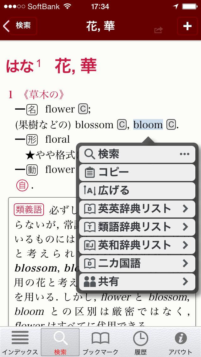 ルミナス英和・和英辞典 screenshot 3
