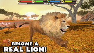 Ultimate Lion Simulator screenshot 1