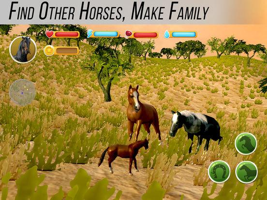 Arabian Horse Simulator Full screenshot 6