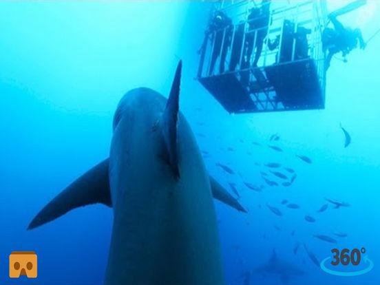 VR Hungry Shark Cage with Google Cardboard screenshot 3