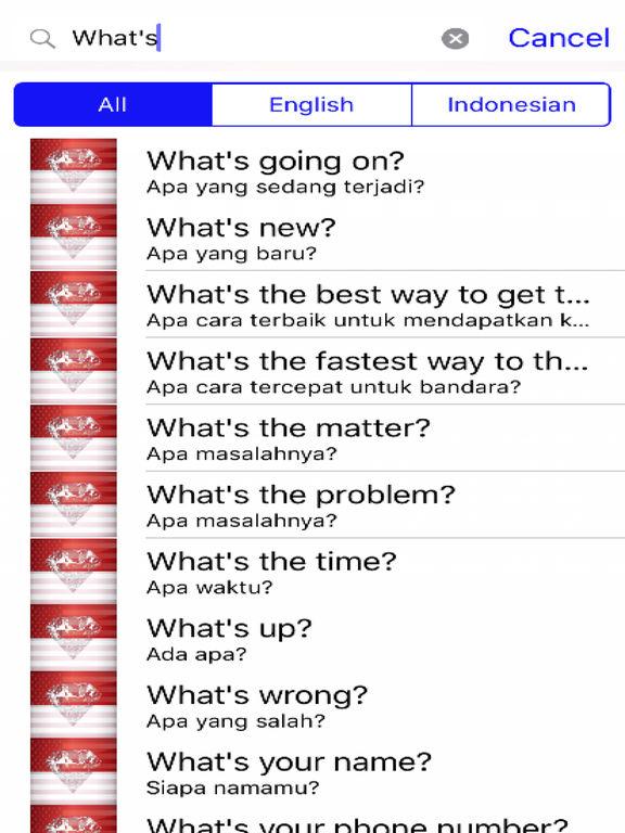 Indonesian Phrases screenshot 5