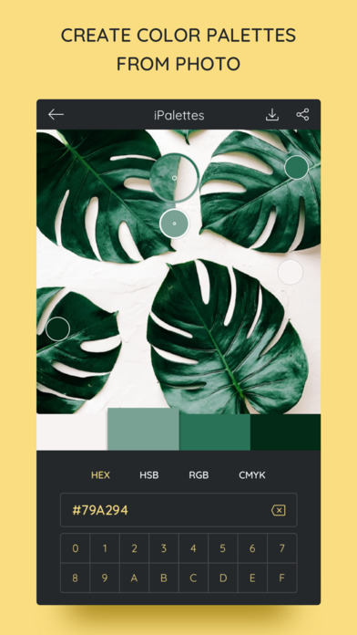 iPalettes - Color palettes screenshot 2