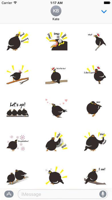 Grackle Bird Sticker screenshot 1