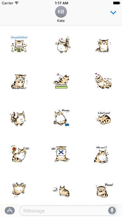 Maine Coon Cat - Mainemoji Emoji Sticker screenshot 2