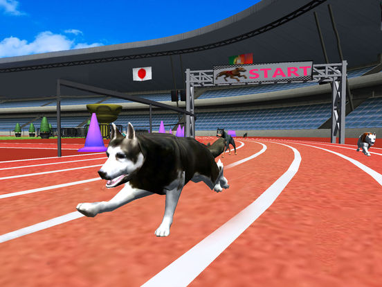 Ultimate Dog Racing : Virtual Stray Simulator 2017 screenshot 5