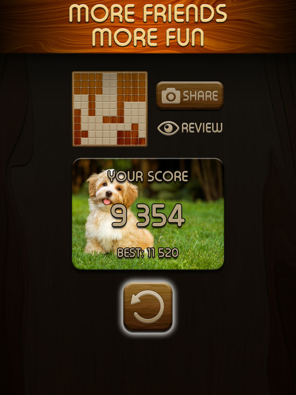 Woody Block Puzzle  ™ screenshot 8