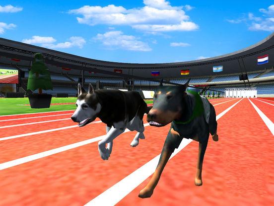 Super Dog Racing Champions screenshot 5
