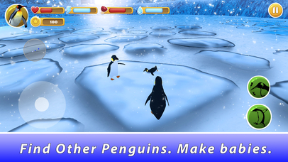 Penguin Family Simulator Full screenshot 2