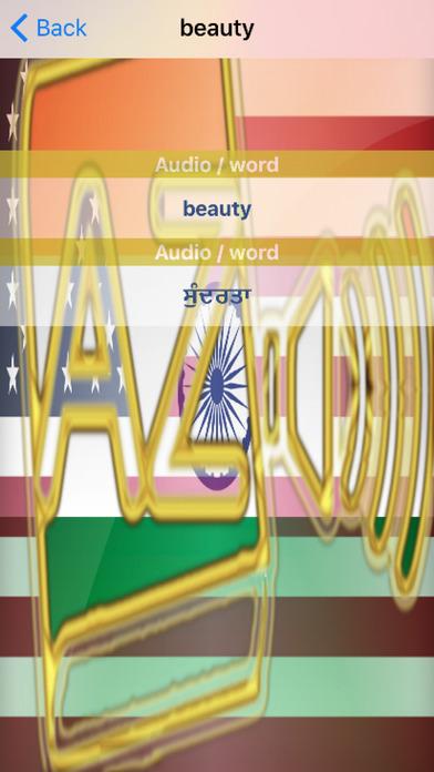Punjabi Dictionary GoldEdition screenshot 5