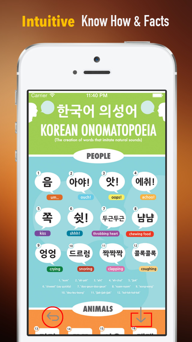 Korean  for Beginners:Glossary, Tips and Guide screenshot 1