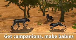 Black Wild Panther Simulator 3D Full - Be a wild cat in animal simulator! screenshot 2