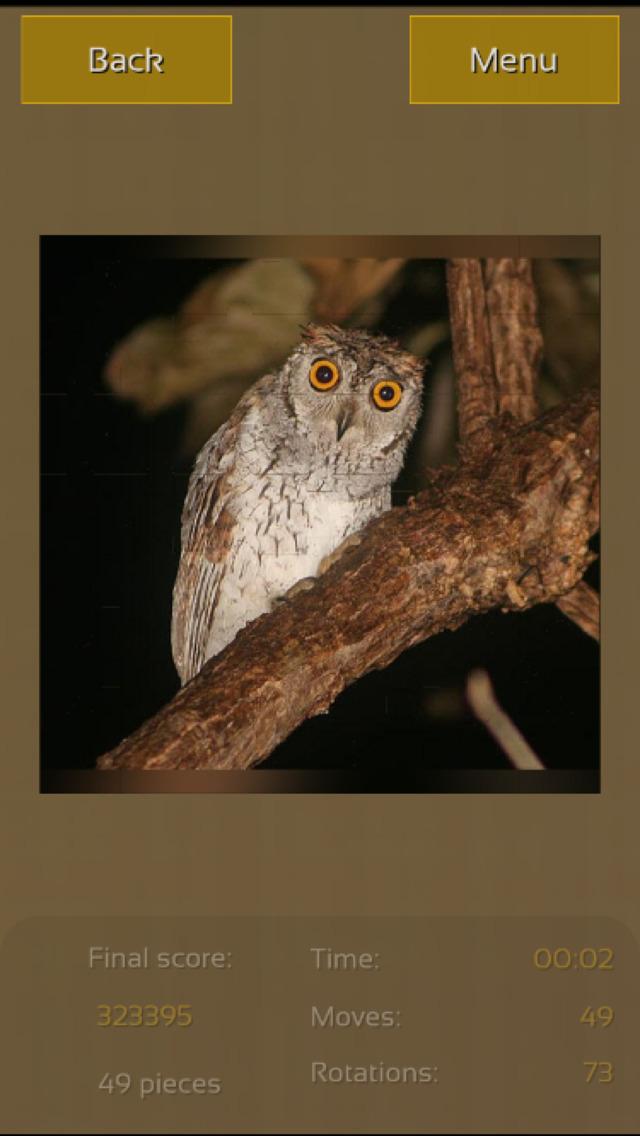 Owls Great Puzzle screenshot 4