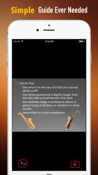Self Learn Saxophone: Beginner Skills and Tutorial screenshot 2
