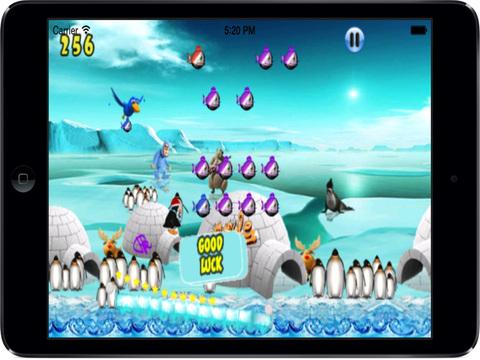 Cookie Penguin Pro screenshot 7