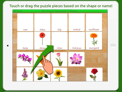 Learn Botany - Parts of Plants screenshot 14