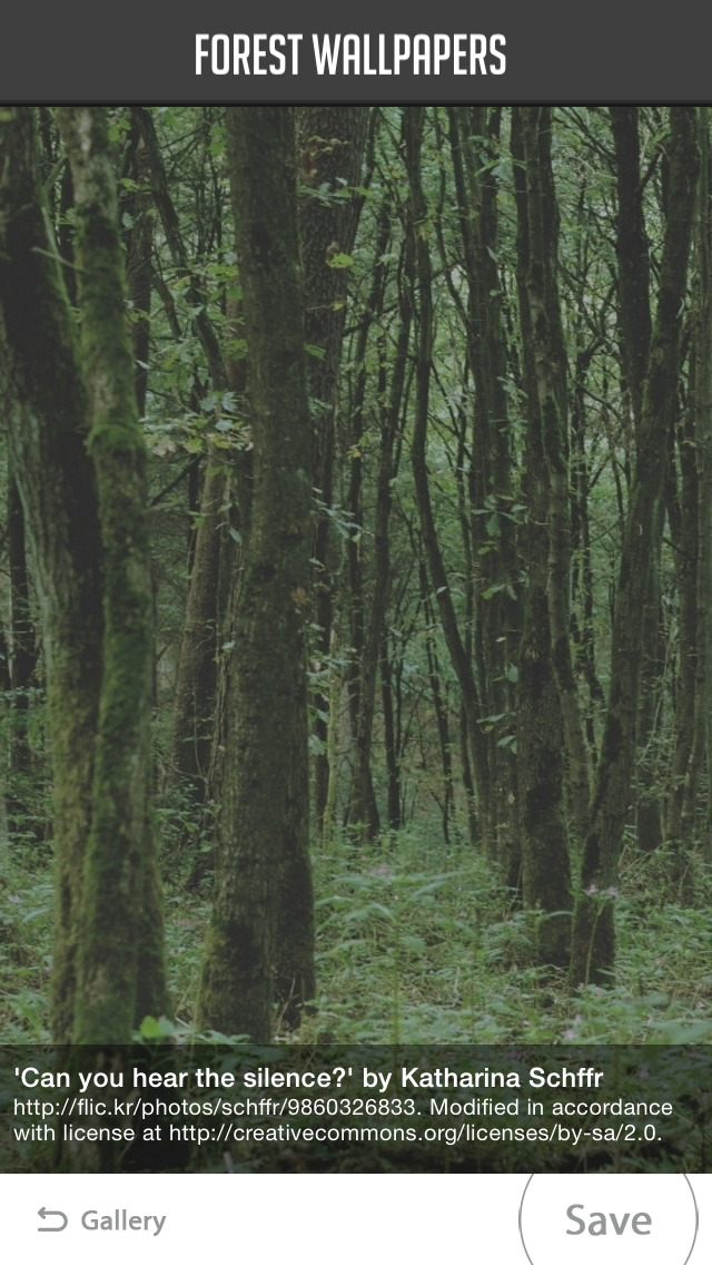 Forest Wallpapers screenshot 4