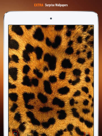 Leopard Print Wallpapers HD: Quotes Backgrounds Creator with Best Designs and Patterns screenshot 8
