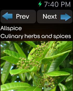 Herbs and Spices Info screenshot 14