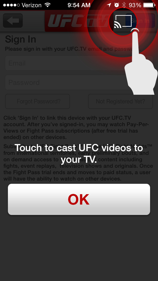 UFC ® screenshot 5