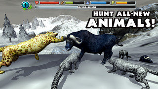 Snow Leopard Simulator screenshot 4
