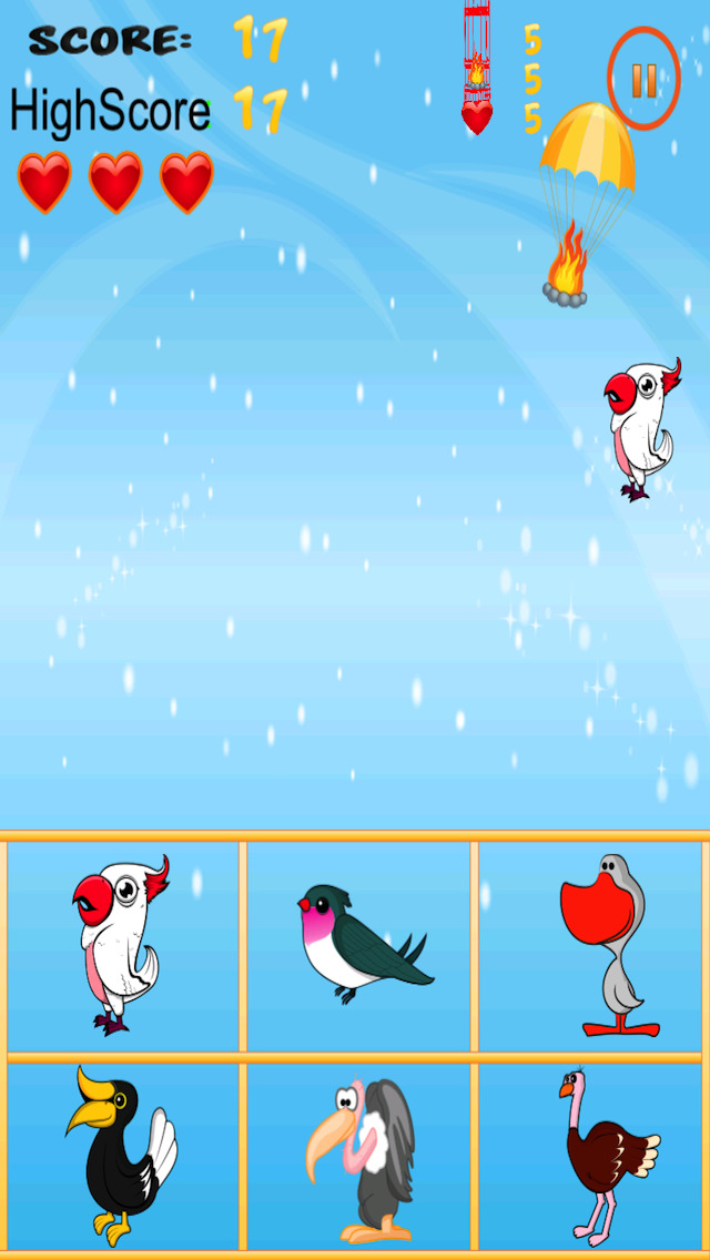 Free Bird Game American Bird Match And Catch screenshot 2
