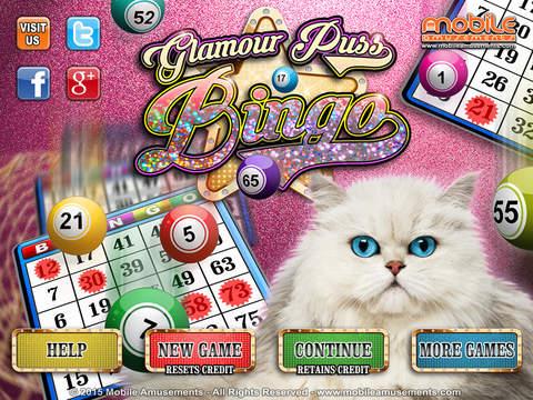 Glamour Puss Bingo screenshot 6