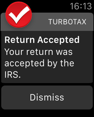 TurboTax: File Tax Return screenshot 14