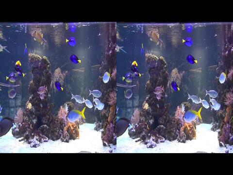 3D Side by Side screenshot 9