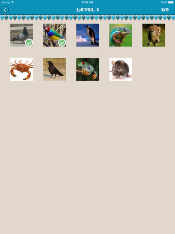 Animal Name Quiz - Guess The Animal (iPad) reviews at iPad Quality Index