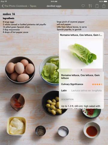 The Photo Cookbook – Tapas screenshot 7
