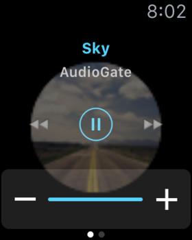 iAudioGate screenshot 6