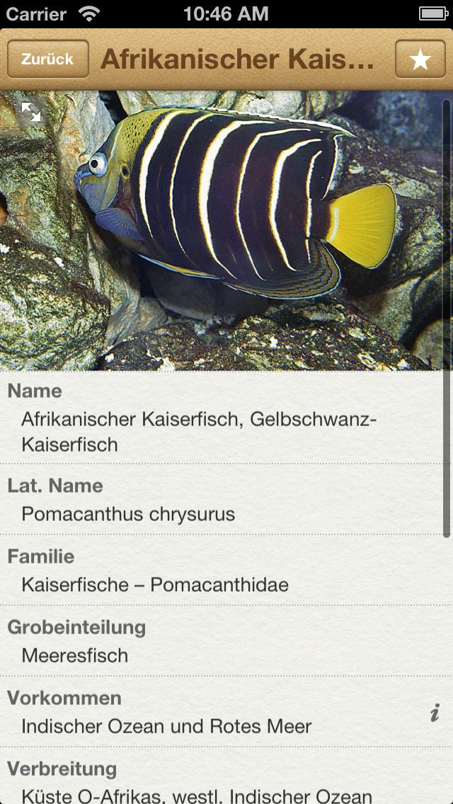 1000 Fische aus aller Welt screenshot 2
