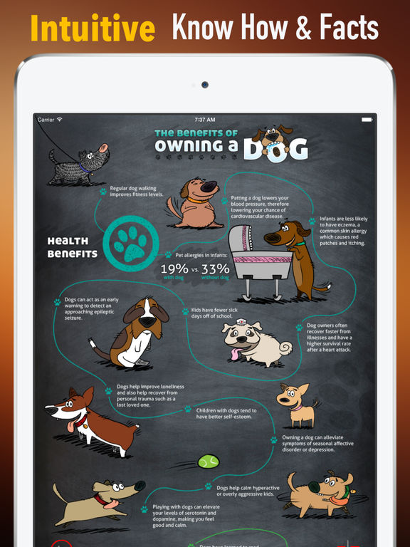 Health Benefits of Owning a Dog:Positive Effects and Guide screenshot 6