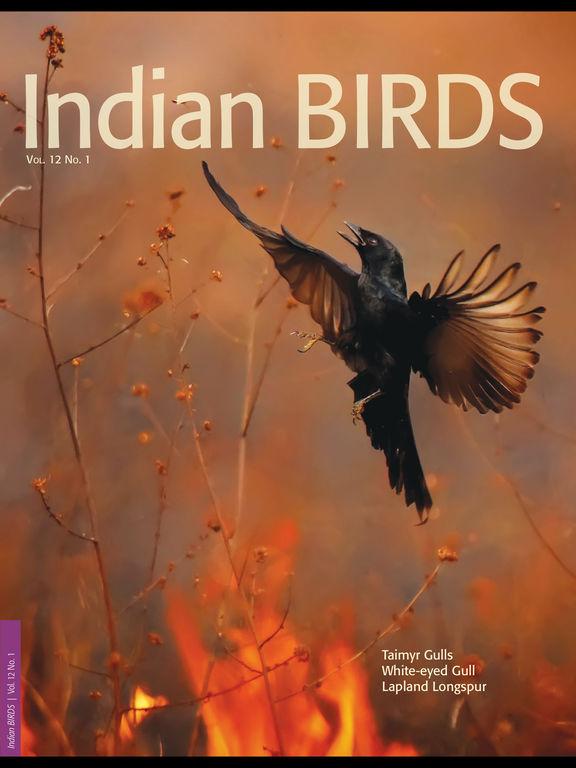 Indian BIRDS Magazine screenshot 6