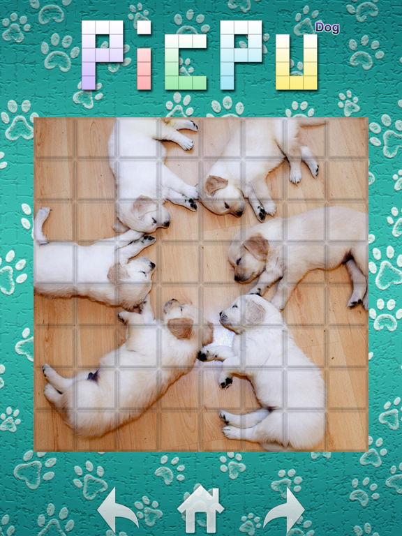 PicPu - Dog Picture Puzzle screenshot 10