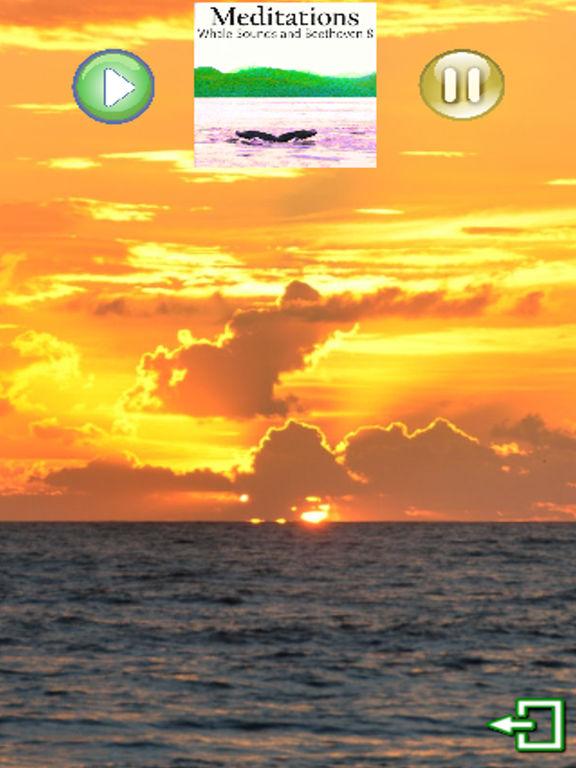 Meditations Whales Beethoven 8 screenshot 3