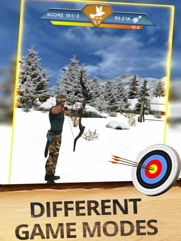 Archer Plus Master 3D screenshot 4