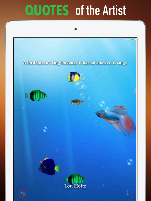 Marine Life Wallpapers HD- Quotes and Art Picture screenshot 9