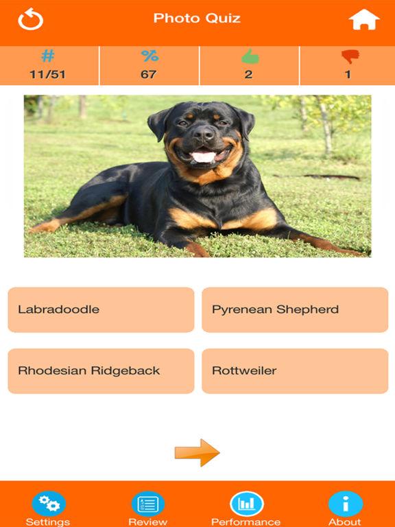 Dog Breeds Quizzes screenshot 7