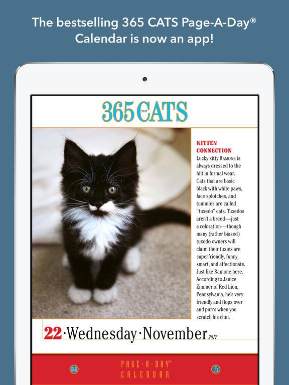 365 Cats Page-A-Day Calendar 2017 screenshot 6