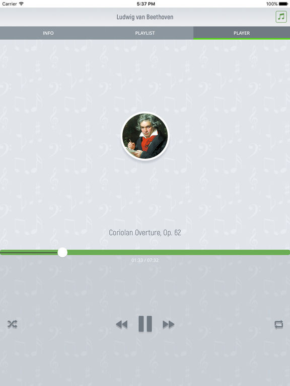 Ludwig van Beethoven - Classical Music screenshot 8