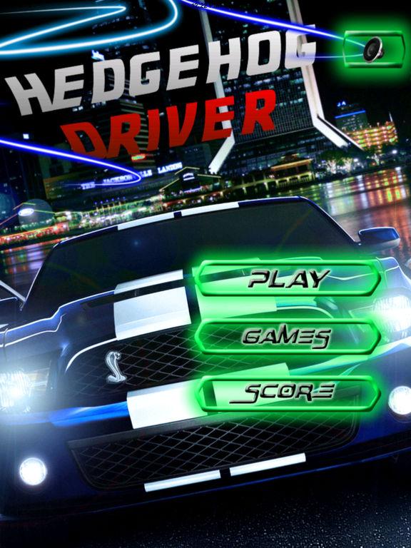 A Hedgehog Driver PRO - Fun Airborne Car screenshot 6