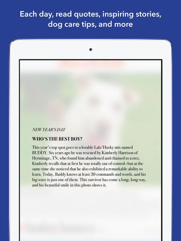 365 Dogs Page-A-Day Calendar 2017 screenshot 10