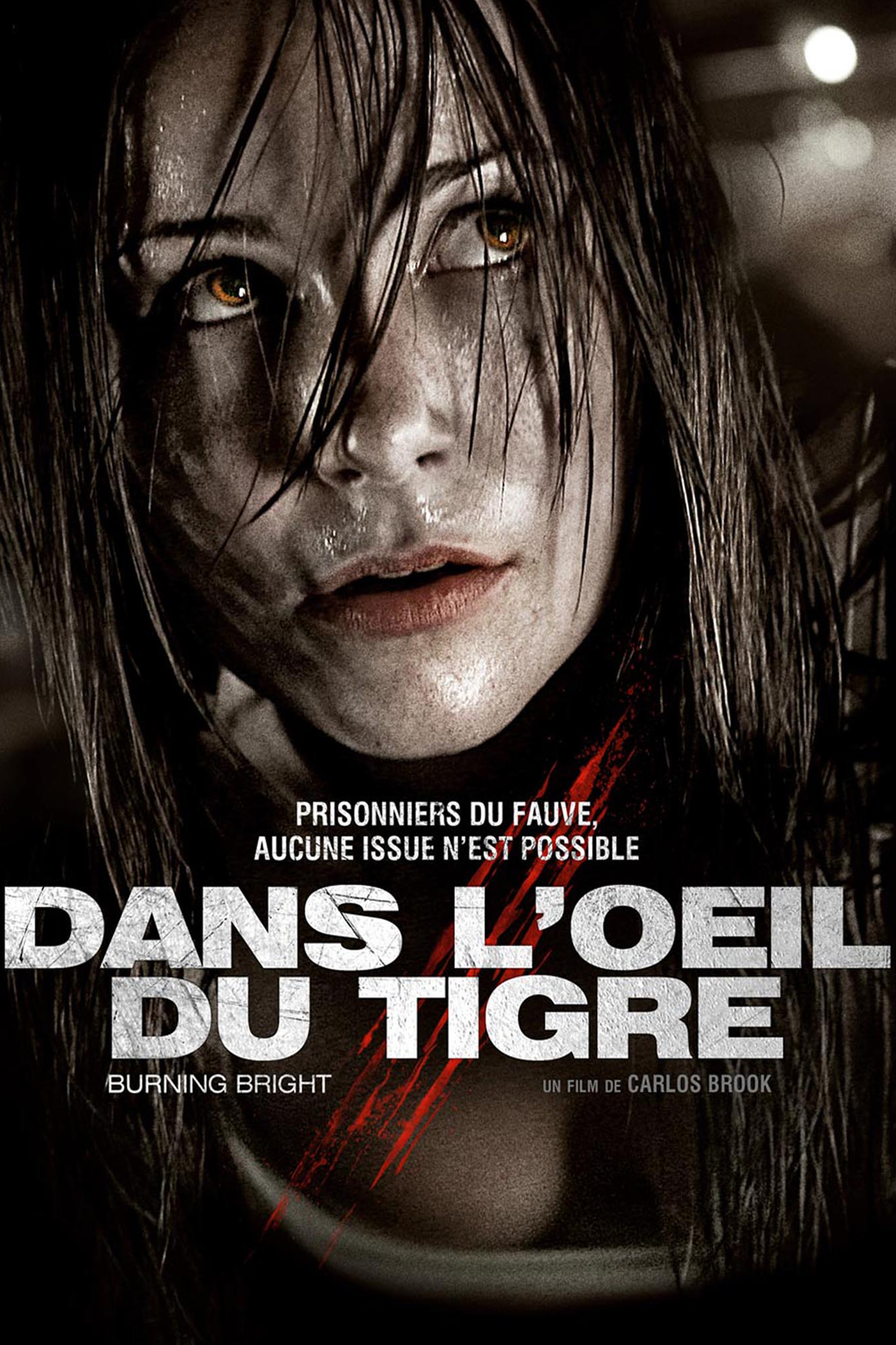 Dans l'oeil du tigre (2013)